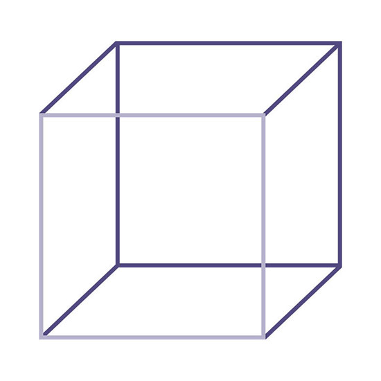 Necker-Cube-CSPE-colours-with-square-joi